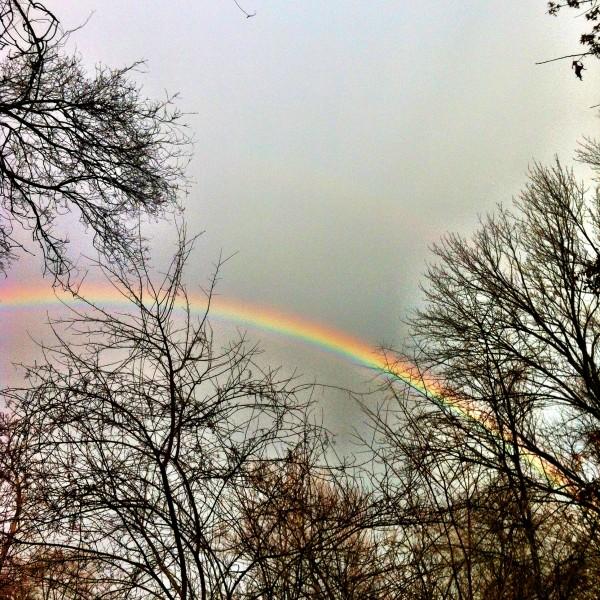Rainbow.  February 2013.